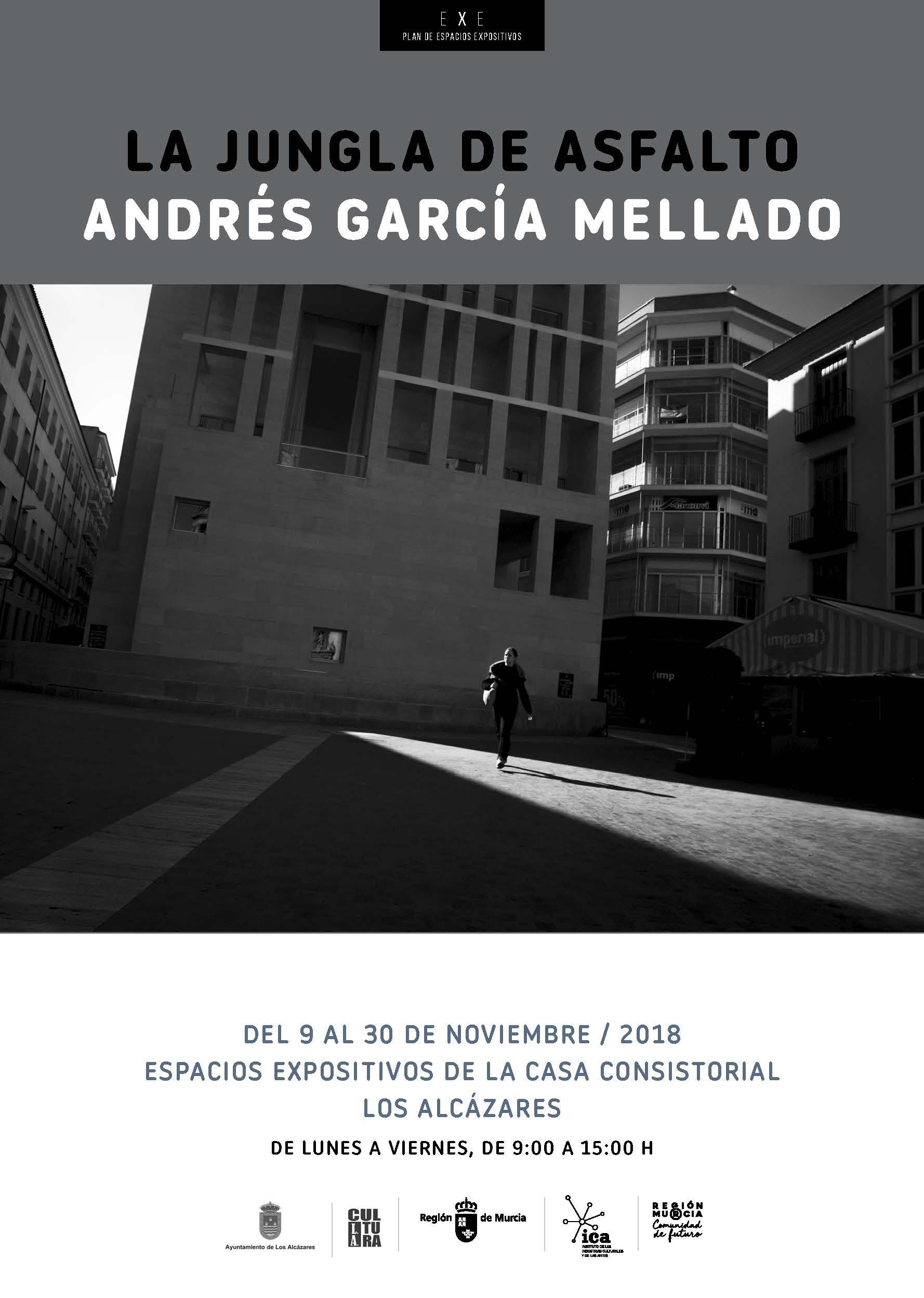 CARTEL-Andrés-García-Mellado-en-los-Alcázares.jpg