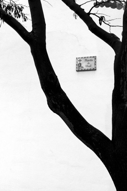 GRANADA.-ANDRES-GARCIA-MELLADO-1.jpg